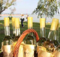 bor, borvidék, kutatás, Nagy Bor Teszt, turizmus, vásárlási szokások