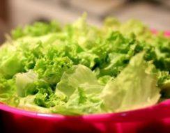 leves, nyár, saláta, zabpehely