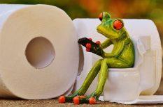 intim higiénia, nedves WC-papír, papírtörlő, wc, zsebkendő