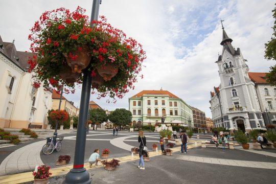 Virágok a Kossuth téren, Kaposvár főterén 2017.  MTI Fotó: Varga György