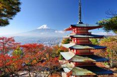 japán, japán juharfa, levél, misztikum, Momiji, ősz, sárga, ünnep, vörös
