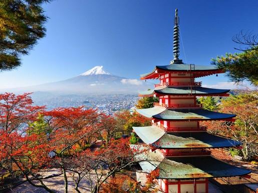 Momiji, Kép: Japánspecialista