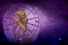 állatszeretet, asztrológia, horoszkóp, jellemrajz, rendmánia, szabályok, személyiségjegyek