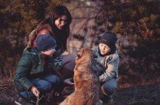 család, gyerek, immunrendszer, kikapcsolódás, őszi szünet, vitamin