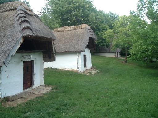 Borospincék, Kép: wikimedia