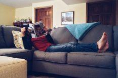 albérlet, árak, laklás, szoba, tendenciák
