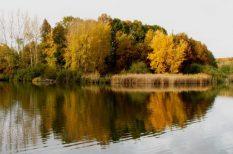október, ősz, Somogy, túrázás, turizmus, Zselici Csillagpark