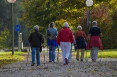 állóképesség, életmód, elhízás, kutatás, magas vérnyomás, mozgás, szív és érrendszer
