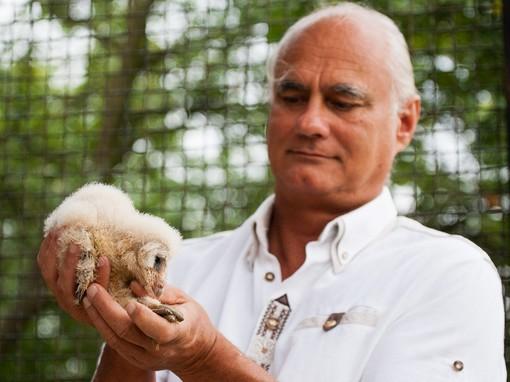 Bagoly a kézben, Kép: The Famous Grouse