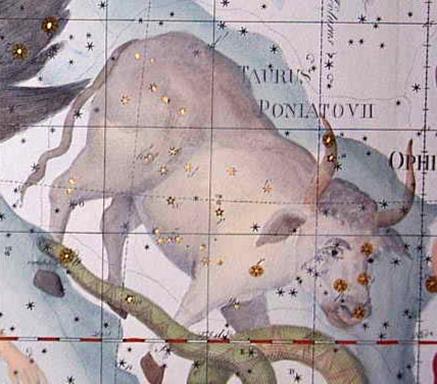 Bika csillagjegy, Kép: wikimedia