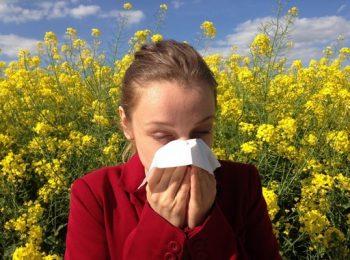 allergén immunterápia, befektetés, diagnosztika, immunrendszer, parlagfű, pollen