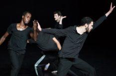 kortárs, programajánló, táncművészet, Trafó