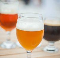 csapolt, magyar, nyár, sör, társasági ital