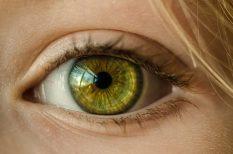 betegség, fertőzés, könny, szem, viszketés