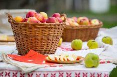 alma, hagyományok, néprajz, programajánló, skanzen, Szentendre, táncosok