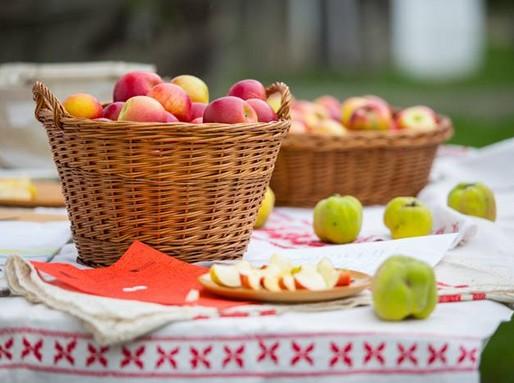 Almák, Kép: Szentendrei Skanzen