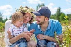 Bükk, fesztivál, gyógynövény, Gyuri bácsi, kert, programajánló, természet