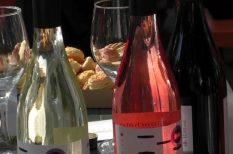 bor, fesztivál, gasztronómia, karakteres bor, különlegességek, lendület, Mátra