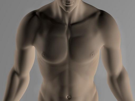 Meztelen férfi felsőtest, Kép: pixabay