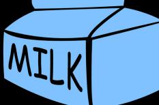 alumínium, csomagolás, környezetbarát, papír, polietilén, steril, tej