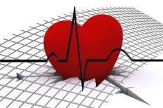 alkohol, dohányzás, koffein, mozgás, ritmus, szív, zsírszegény étrend