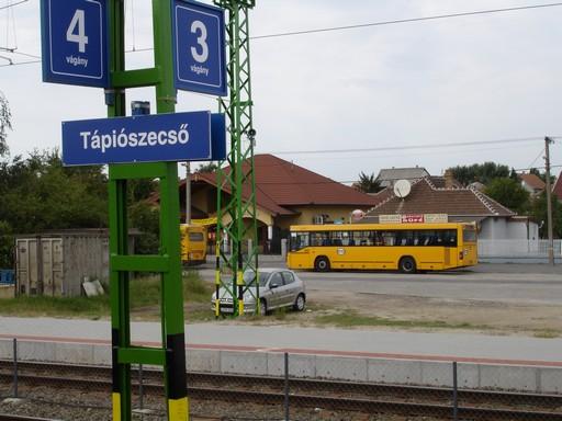 Tápiószecső, Kép: wikimedia