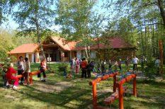 állatkerti program, élmény, erdő, gyerek, iskola, program