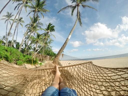 Hintaágy, pálmafák, tenger, két láb, Kép: picnio