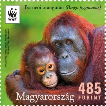 Orángutánék bélyegen, Kép: Magyar Posta