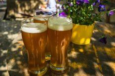 ellenőrzés, gasztronómia, magyar sör, minőség