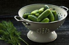 savanyúság, tél, torma, uborka