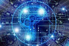 agyműködés, emlék, genetika, igesejt, kutatás, programozás
