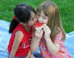 fruktóz, görögdinnye, hassmenés, lebontás, puffadás