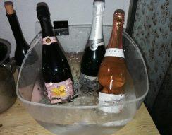 birtok, cava, Champagne, gsztronómia, hölgyek, művészet, pezsgő, prosecco, szőlő, történelem