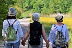 fokozatosság, mozgás, séta, szív és érrendszer, trombózis