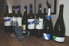 bor, Bujdosó család, Dél-Balaton, pezsgő, pincészet, vitorlázás