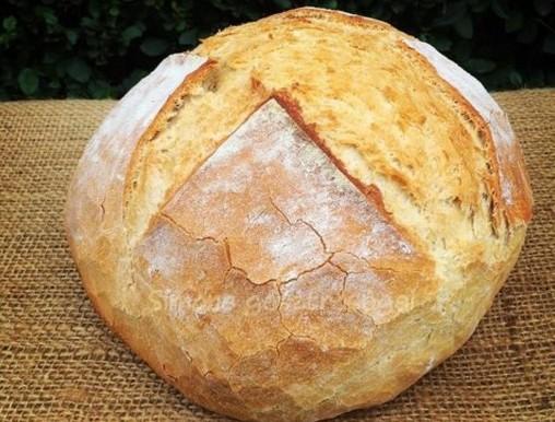 Házi kenyér, Kép: Pammer Lívia