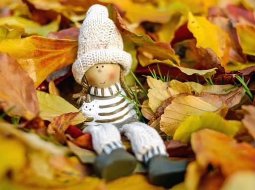 Őszi baba, Kép: pixnio