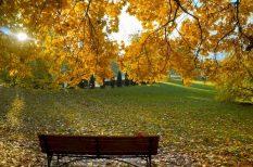 egészség, erőteljes melegedés, hidefront, Meteo-Klinika, nyár, ősz, terhelés