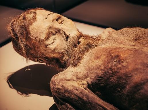 Edélyi múmia közeli új, Kép: sajtóanyag