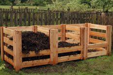 bio, egészség, gyomirtó, kertészkedés, természtes, termlszet, vegyszer
