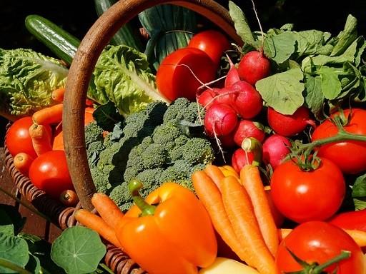 Komposzttal táplált zöldségek, Kép: Megyeri Sazbolcs