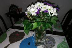Dél-Korea, kert, krizantém, ősz, otthon, szerelem, váza