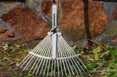 gyepszellőztetés, kertgondozás, munkálatok, ősz, szüret, tél, ültetés