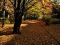 hidegfront, melegrekordok, óraátállítás, ősz