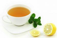 gyógynövény, illóolaj, megfázás, panaszok, tél