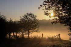 extrém meleg, időjárás, köd, nyirkos reggel, pszichés megterhelés