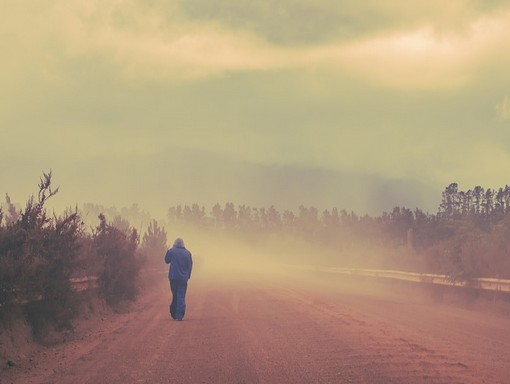 Ködös reggel, Kép: pixabay