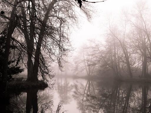 December köddel, Kép: pixabay