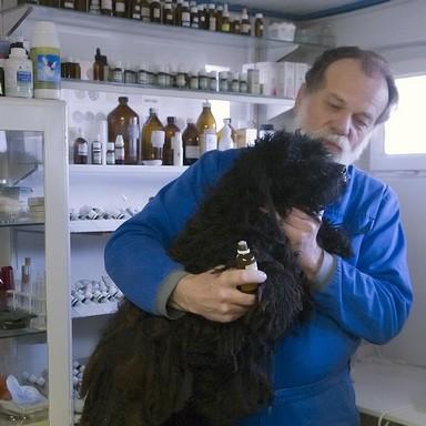 Dr. Mátray Árpád, állatorvos, Kép: sajtóanyag